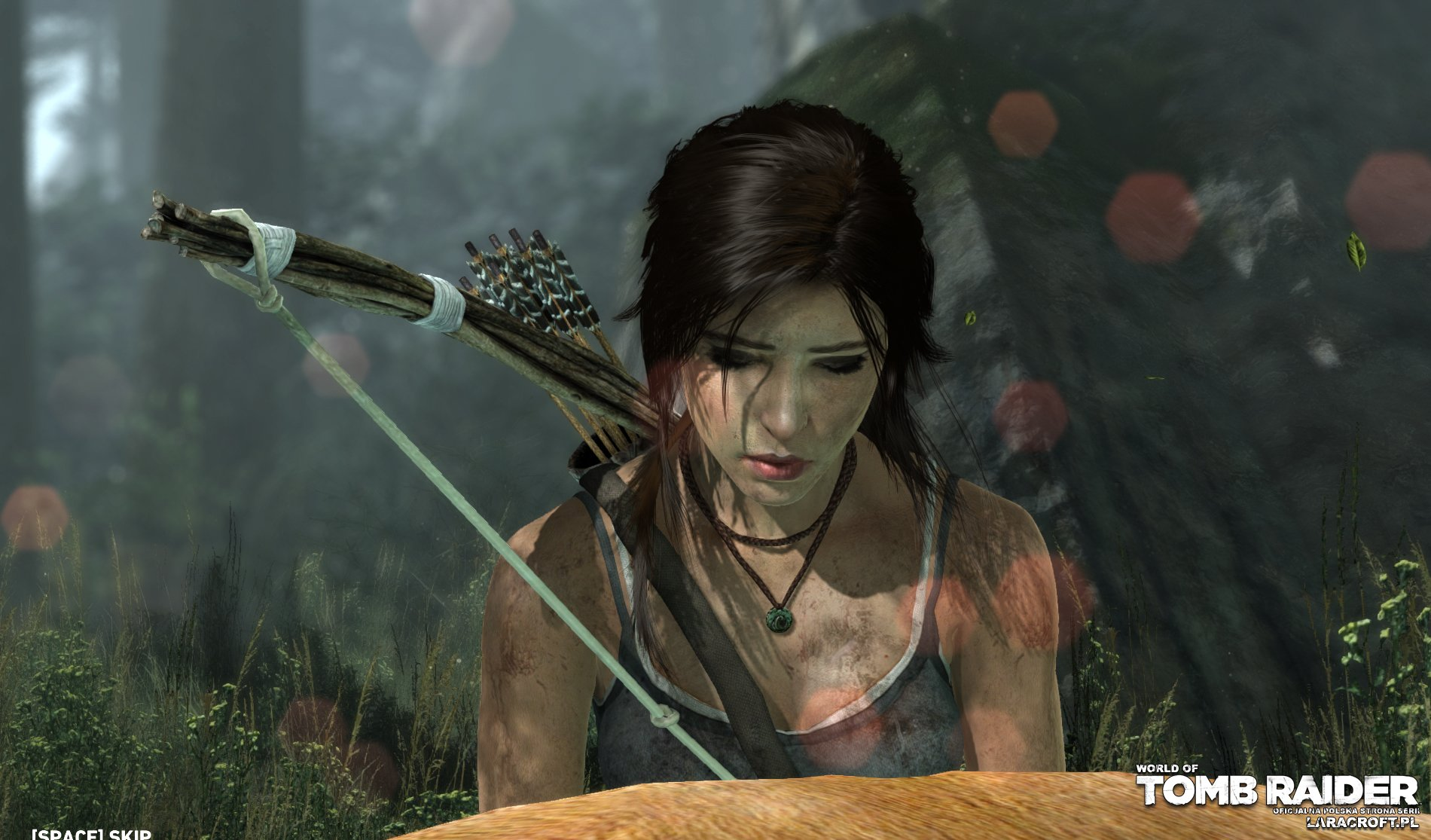 Tombraider cartoon images